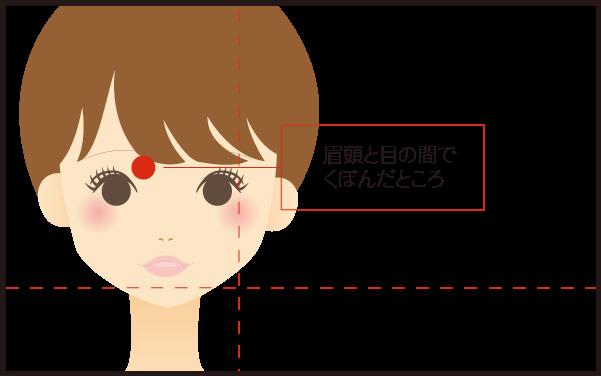 攅竹(さんちく)